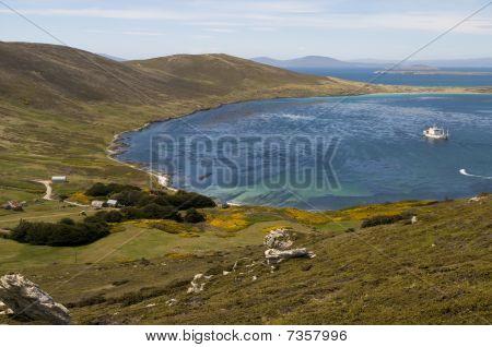 Paradies auf den Falklandinseln