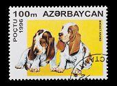 AZERBAIJAN - CIRCA 1996: mail stamp printed in Azerbaijan featuring basset hound puppies poster