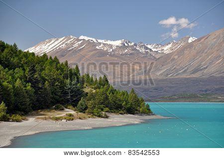 Lake Tepako Shoreline