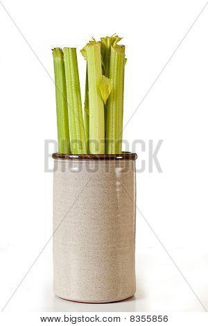 Celery In Jar