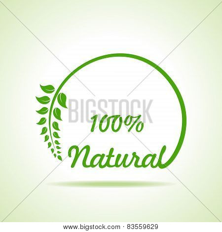 Eco friendly website icon stock vector