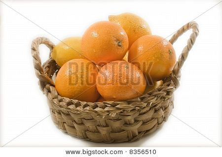 Citrus In A Basket