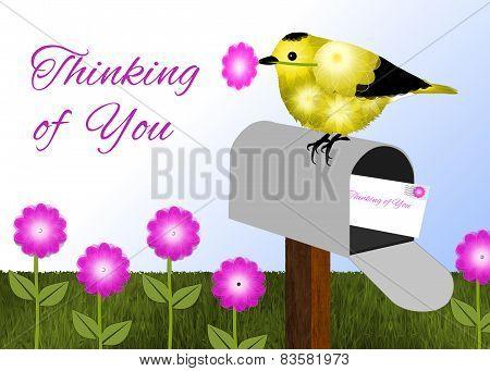 Black and Yellow Bird on Mailbox