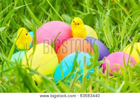 Toy Chicks On Easter Eggs In The Grass
