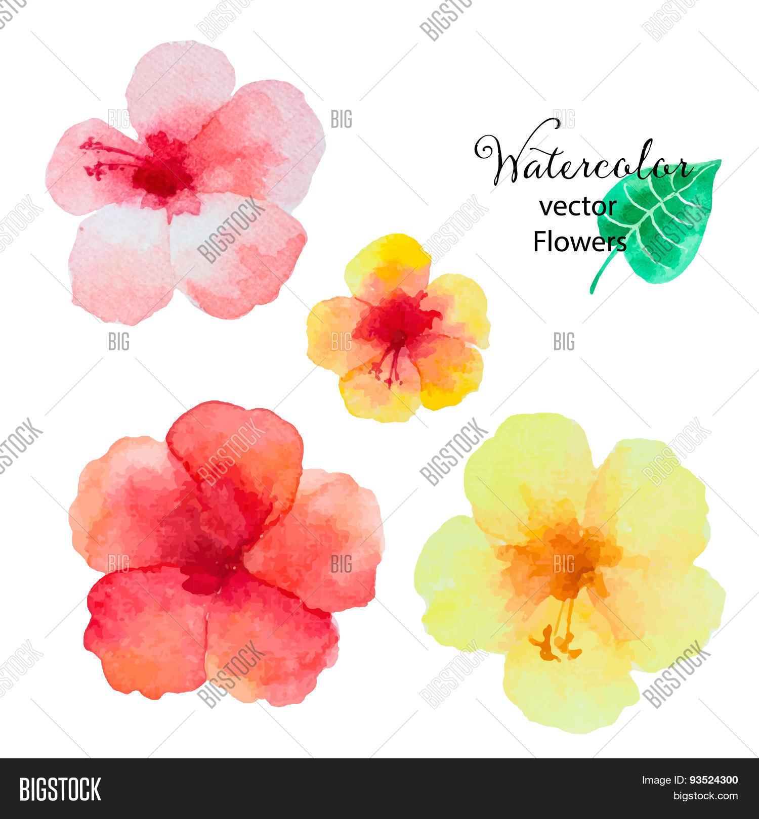Set watercolor vector photo free trial bigstock set of watercolor hibiscus flowers izmirmasajfo