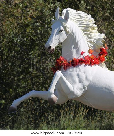 Beautiful life size rearing white horse garden figure poster
