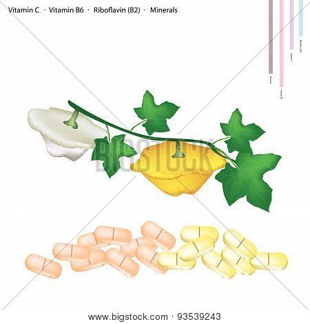 Pattypan Squash With Vitamin C, B6 And B2