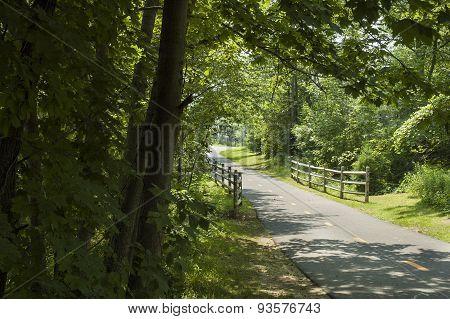 Quiet Bike Path