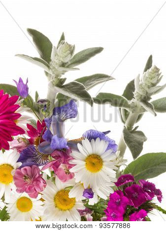 Summer Bouquet Of Colorful Flowers