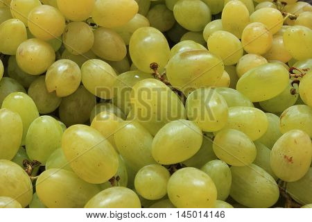 Close up view of ripe green wine grape. View with fresh green grape. Ripe grapes background. Top view