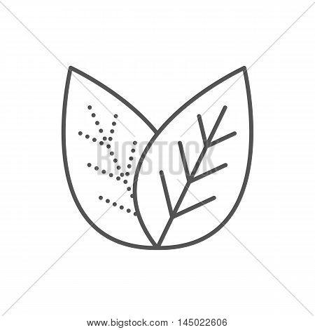 Tea leaves. Flat design. Thin line leaf icon. Vector illustration isolated on white background. Black and white logo.