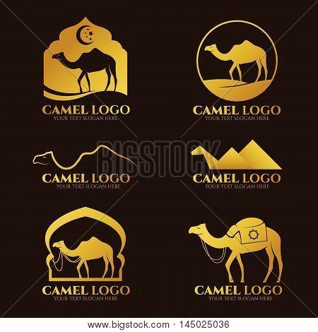 Gold Camel logo and sign vector set design