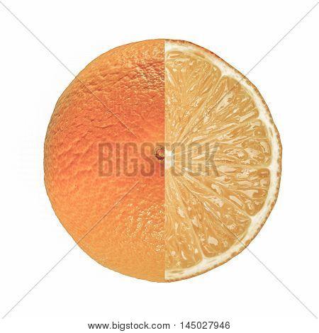 Orange Fruit Full And Sliced Vintage