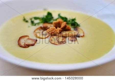Mushroom soup in a white plate. Tasty food