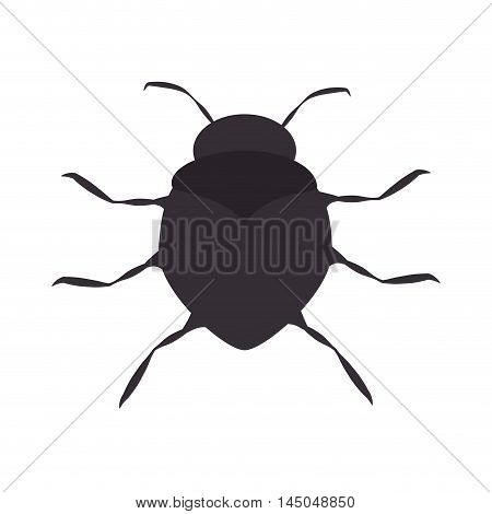 bug insect pest virus animal antenna beetle vector illustration