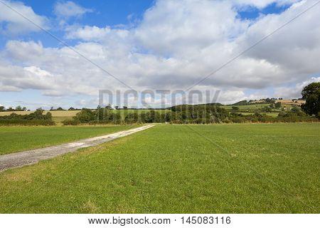Summer Bridleway