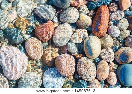 Colorful Lake Superior Stones shine under the surface at Whitefish Point in the Upper Peninsula of Michigan