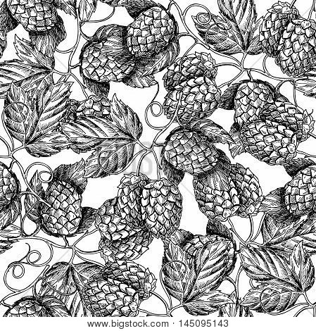 Hop vector seamless pattern.Black hand drawn artistic beer hop branch with leaves on white background. Engraved style vintage wallpaper. Great drawing decor for oktoberfest or beer packaging