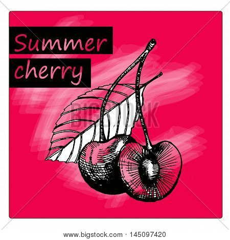 isolated cherry , sweet cherry fruit, leaf and fresh cherry, two cherry gravure illustration and hand drawn cherry stylized treatment