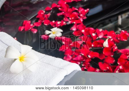 Spa theme photo with a bath tube and lotus flower