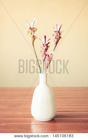 Wild orchids decorated in a white vase on the table (Curcuma rhadota Sirirugsa & M.F. Newman)