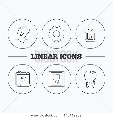 Tooth extraction, caries and mouthwash icons. Dental x-ray linear sign. Flat cogwheel and calendar symbols. Linear icons in circle buttons. Vector