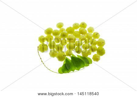 Yound star gooseberry isolated on white background