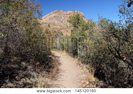 Hiking Trail in Big Bend National Park, Texas