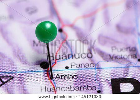 Ambo pinned on a map of Peru