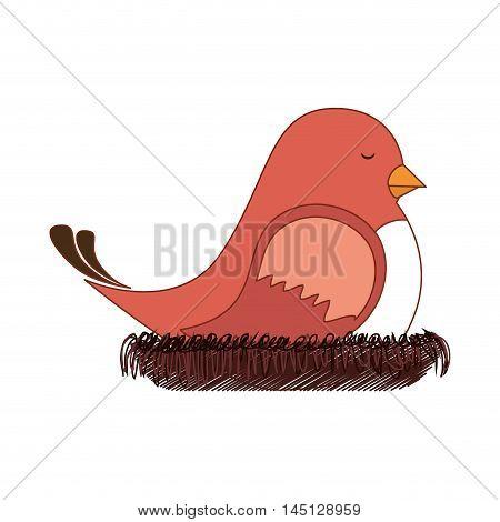 bird nest sleep design vector illustration eps 10