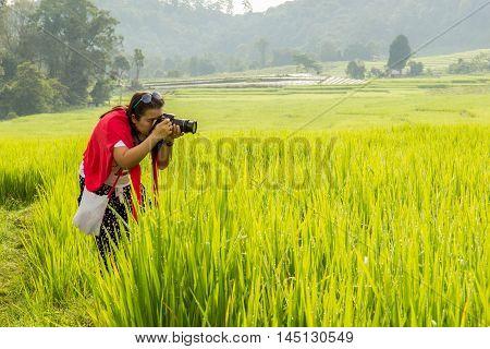 Asian women take a photo green terraced rice field in Mae Klang Luang Mae Chaem Chiang Mai Thailand