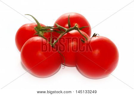 beautiful crop of bright red ripe tomatoes