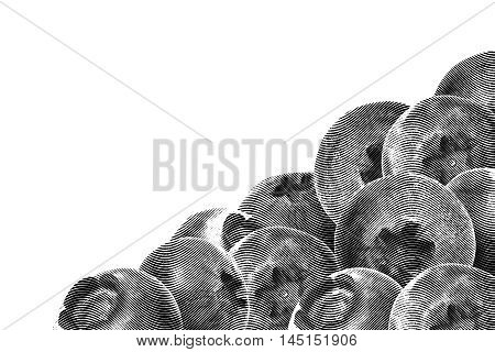 Many juicy and fresh blueberries on white background. Blue color blueberries close-up. Image of blueberries with high resolution. Drawing sketch painting blueberry