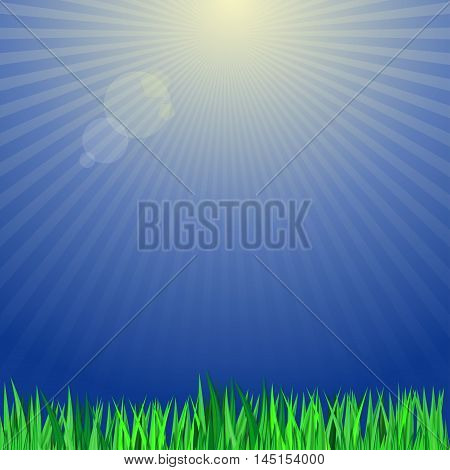 Green grass on a background of the sun's rays. Vector background with green grass and blue sky. Vector background with green grass and blue sky.