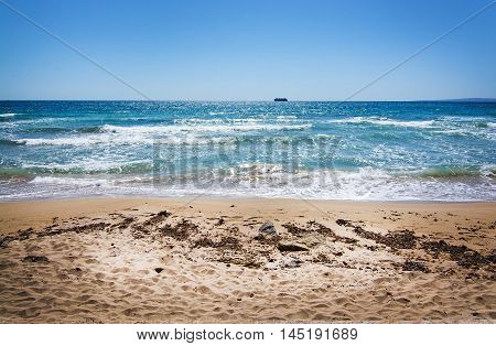 Sandy beach with track of seagrass in Palma de Mallorca Balearic islands in April.