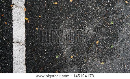 Asphalt Road Texture With Orange Falling Leaves