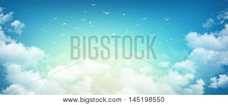 High resolution morning sky background sunlight through white clouds and free birds flying away