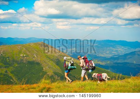 Mountaing Hiking With Pet