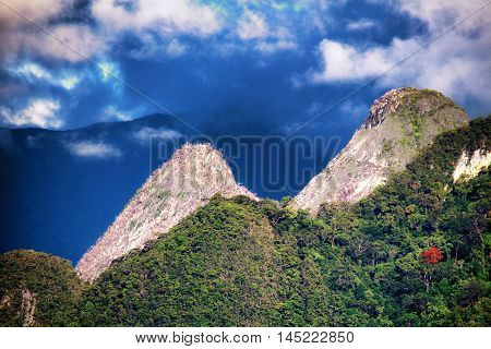 GUNUNG MULU/MALAYSIA - 25 NOVEMBER 2015: Limestone pinnacles in the green wild rain forest of Gunung Mulu National Park in Borneo