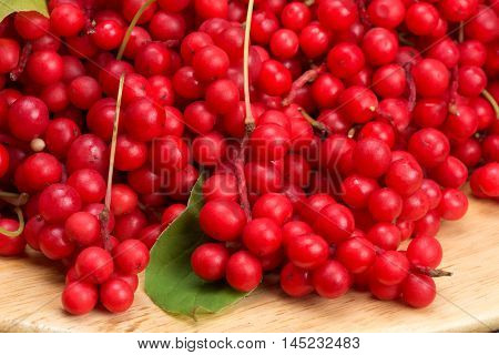 Schisandra chinese or five flavor berry - ripe