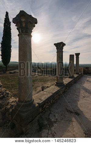 Some pillars of the roman ruins of Volubilis on a beautiful day with sunshine, blue sky and only few clouds photgraphed in vertical format.