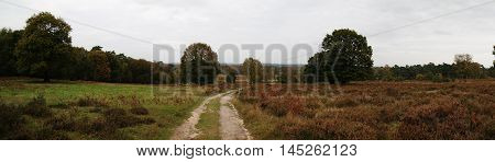 Wahner Pagan Field Road Valley Landscape Panorama