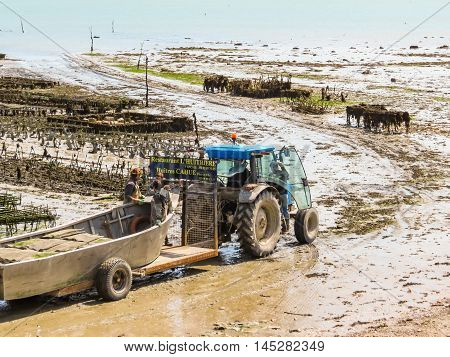 CANCALE, FRANCE -MAY 03, 2014: Oyster farms with growing oysters in lowtide, Cancale, France