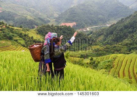 woman farmer carry basket on shoulder work on rice terrace with her daughter