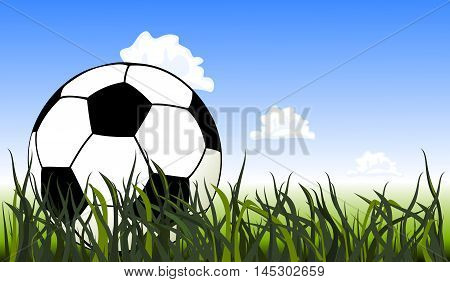 Vector soccer ball on the green grass. Close up