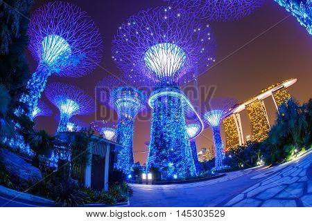 Night view of The Super Tree Grove at Gardens by the Bay in Singapore. Spanning 101 hectares and five-minute walk from Bayfront MRT Station. poster
