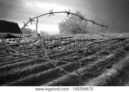 Barbed wire. The cruel instrument of restriction and suppression constructed by the person.