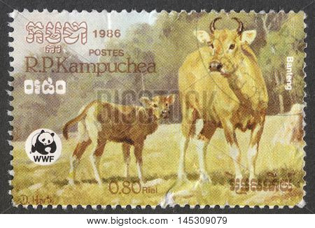 MOSCOW RUSSIA - CIRCA AUGUST 2016: a stamp printed in CAMBODIA shows a Banteng (Bos javanicus) the series