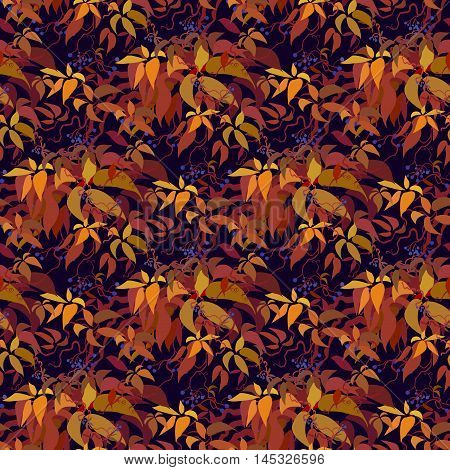 Autumn grape vine seamless pattern design. Wilde grape with red orange leaves and berries. Autumn or fall design on dark background. Vector illustration stock vector.