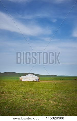 A nice typical Mongolian landscape of the yurt. Mongolian steppe